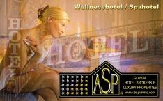 Wellnesshotel Raum Kitzbühel kaufen