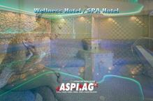 ASP_Wellness_Spa_Resort_for_sale