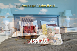 ASP_Lake_Hotel_for_sale