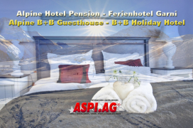 Hotel Pension Saalbach