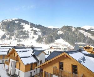 Blick auf Schigebiet /view to ski-area