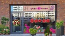 Außenansicht Blumen2