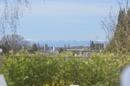 Ausblick von der Südterrasse