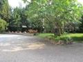 Auffahrt und Garten