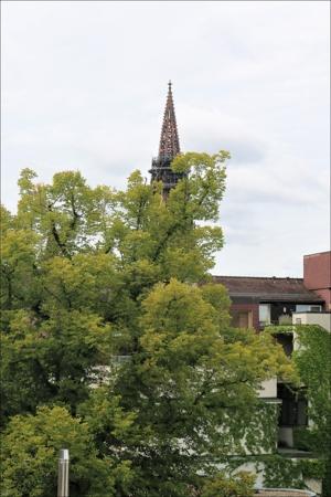 Ostausrichtung mit Blick auf das Freiburger Münster
