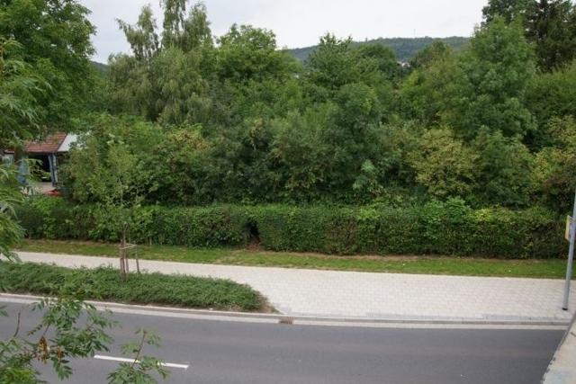 Straßenansicht Sondershausen.jpg