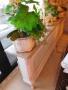 Heizkörperverkleidung-Blumenbank