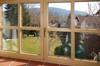 Blick aus dem Wohnbereich in den Garten
