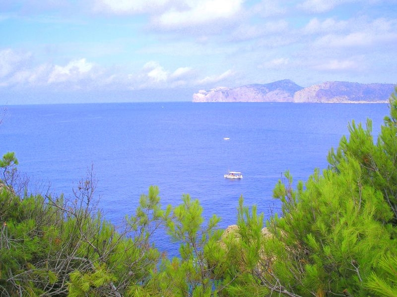 Parcel in first sea line - Santa Ponsa