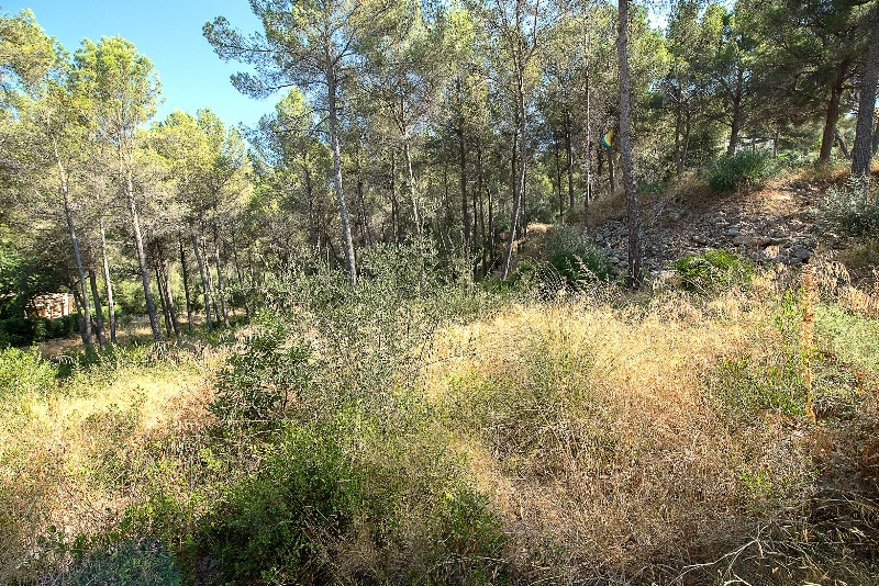 It is a south-southwest oriented plot of approx  3 280 m² land with construction coefficient  33% and a land occupation of 25%