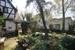 Garten+Teich