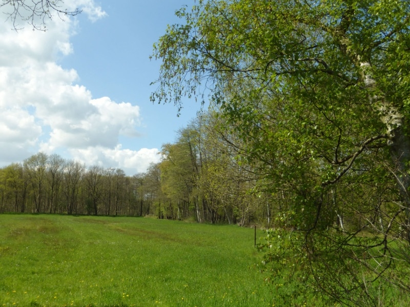 Landschaftsschutzgebiet nebenan