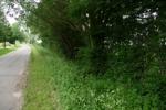 Zufahrt 2
