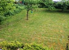 Der gepflegte Garten