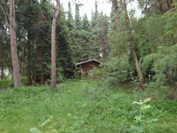 Grundstück1