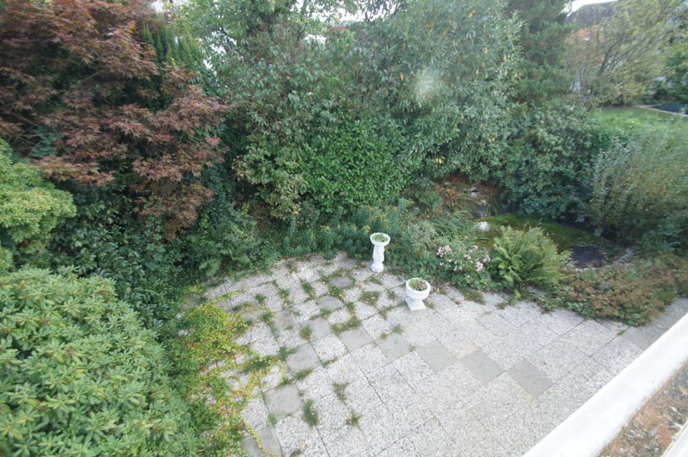 Aktuelle Süd-Terrasse..png