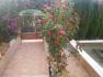 PM07275_Haus_Pool_Garten_Cala-Murada_02