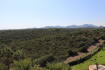 PM07293_Apartment_Dachterrasse_Gemeinschaftspool_Calas-de-Mallorca_20