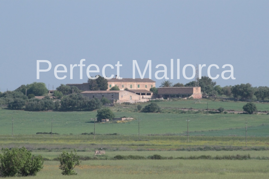Ref:PM07130 Finca For Sale in Vilafranca de Bonany