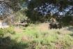 PM07234_Grundstueck_Cala-Mandia_02