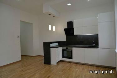Wohn-Küchenbereich