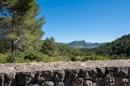 Port Andratx views