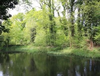 Letzte Gelegenheit! Traumgrundstück direkt am idyllischen Lindenweiher mit optimaler Südausrichtung