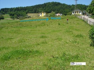 Bild vom Baugrund