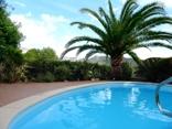 2 Pool Garten