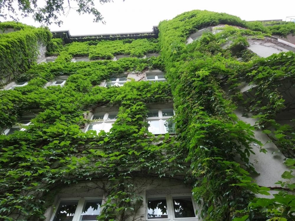 Außenansicht Fassade Vorderhaus