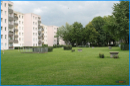 Gemeinschaftgarten