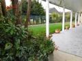 Der wunderbare Garten