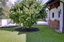 Haus- und Gartenansicht