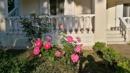 Garten - Terrasse Esszimmer