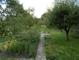 Hinterer Teil des Gartengrundstücks