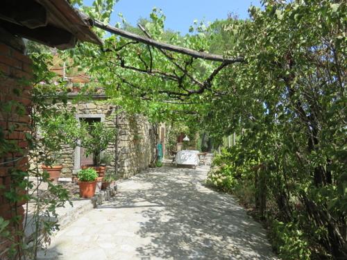 """""""Casale Piccolo Contadino"""" Charakteristisches Bauernhaus mit Gästehaus, Pool, Gemüse- und Weingarten"""