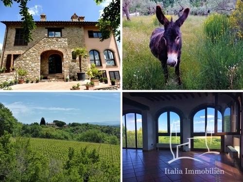 Großes Bauernhaus mit Panoramablick, Olivenhain, Maulbeerbaum und Esel in Alleinlage! (21)