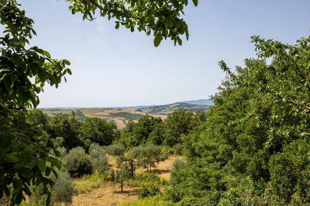 Typisches Bauernhaus mit 2 ha Land, viel Privatsphäre und einer fantastischen Aussicht