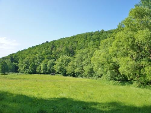 Wald- und Wiesenland