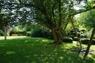 gemeinschaft. Gartenbereich
