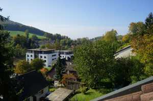 Blick nach Basel und F