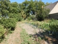 Garten, mögliches zweites Baugrundstück