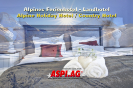 ASP_Alpine_Country_Hotel_for_sale