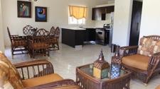Villa Z-33 sala, comedor y cocina sps