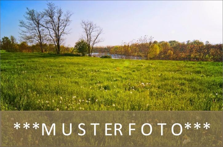 Musterbild_Grundstück