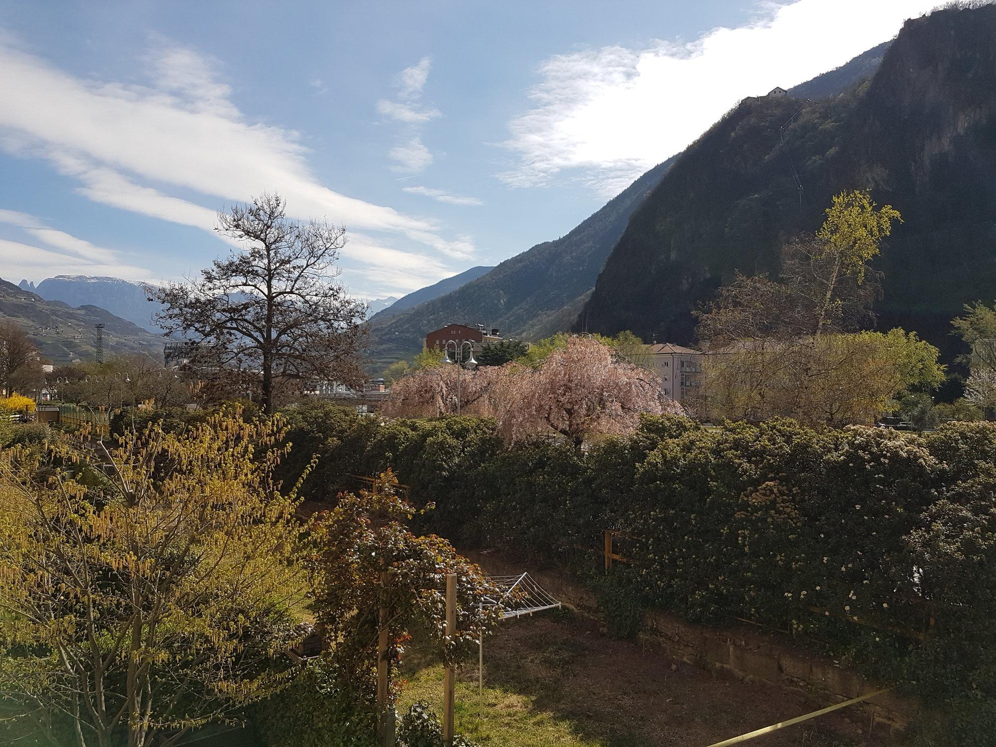 Blick auf Rosengarten_vista sul Catinaccio