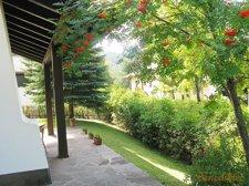 Blühende Terrasse