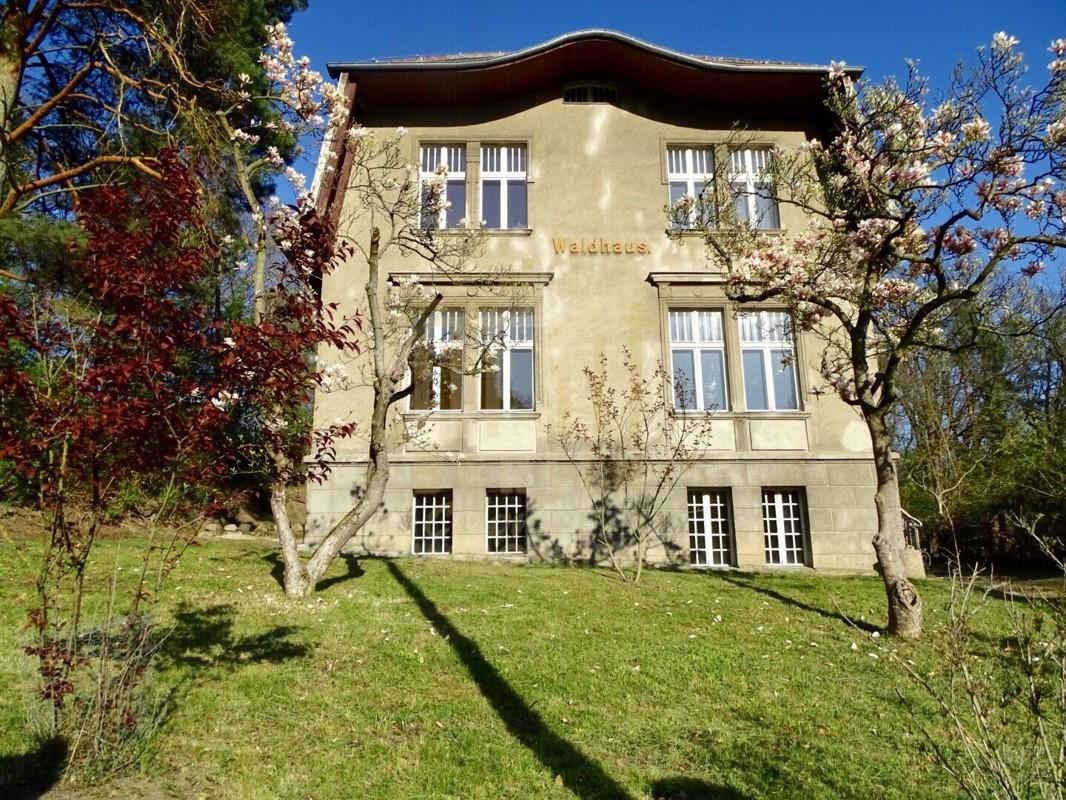 Villa Waldhaus