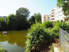 Teich hinter dem Haus