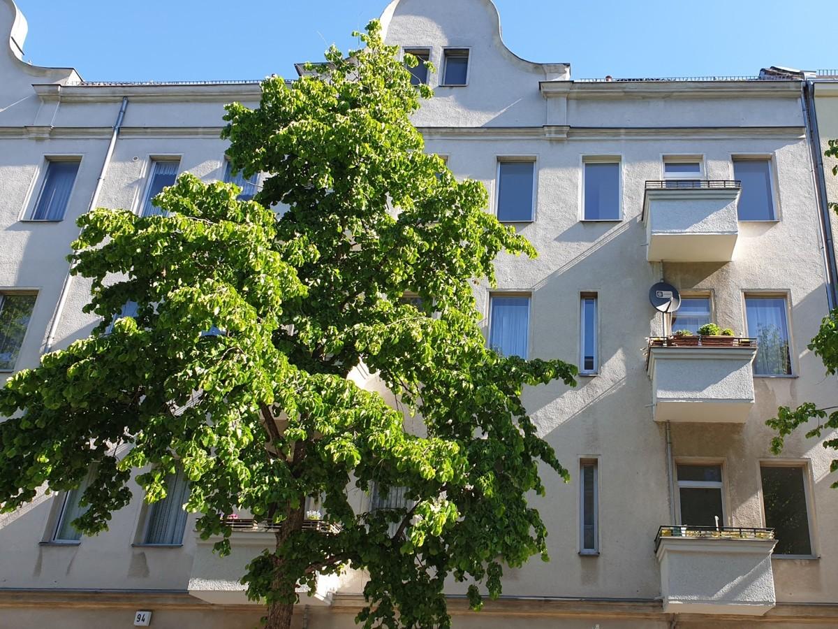 Bargain Studio Apartment